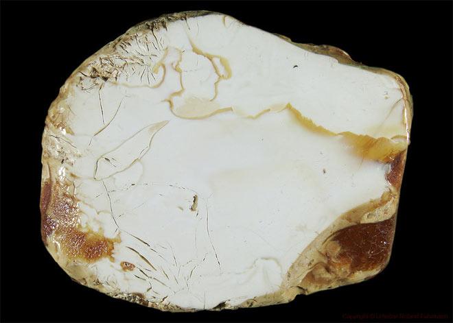 свойства белого янтаря