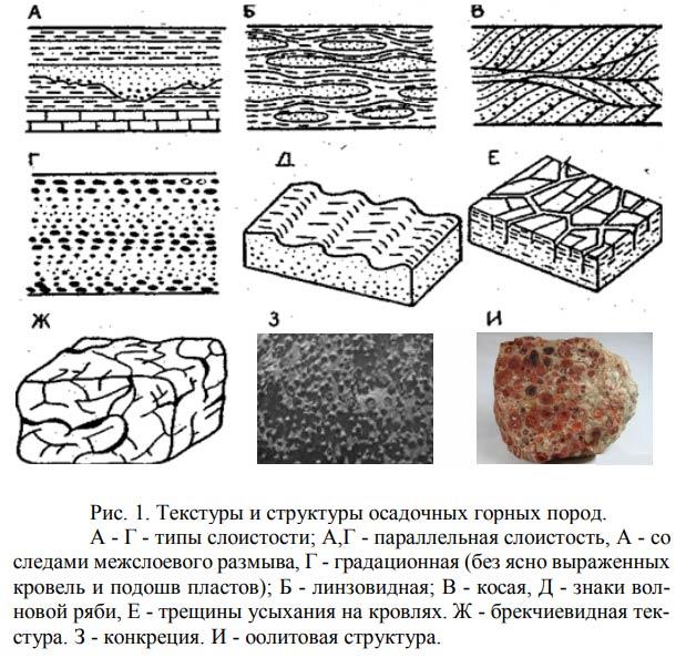 структура осадочных горных пород