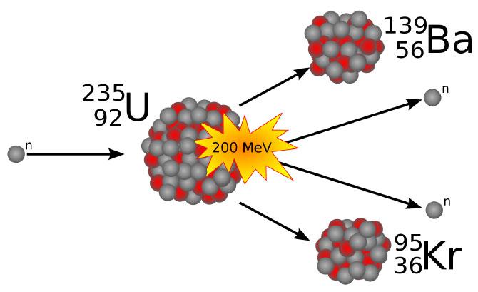 Схема деления 235U