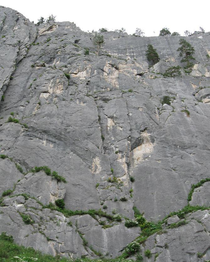 Известняковые скалы в урочище Че-Чкыш; долина Катуни, Алтай